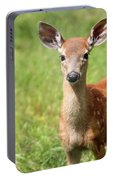 Baby In The Tall Grass Portable Battery Charger