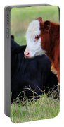 Baby Of The Herd Portable Battery Charger