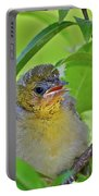 Baby Oriole Portable Battery Charger