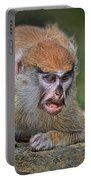 Baby Patas Monkey On Guard  Portable Battery Charger