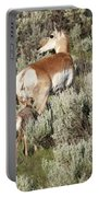 Baby Pronghorn Feeding Portable Battery Charger