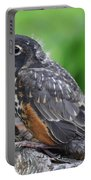 Baby Robin Portable Battery Charger