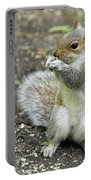 Baby Squirrel Portable Battery Charger