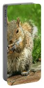 Baby Squirrel's First Peanut Portable Battery Charger