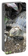 Baby Tortoise Portable Battery Charger