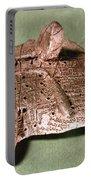 Babylonian Cuneiform Portable Battery Charger
