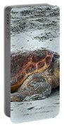 Back To The Sea  Portable Battery Charger