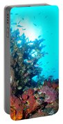 Backlit Coral Portable Battery Charger
