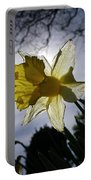Backlit Daffodil Portable Battery Charger