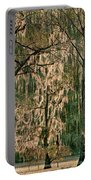 Backlit Moss-covered Trees Caddo Lake Texas Portable Battery Charger