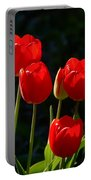 Backlit Red Tulips Portable Battery Charger