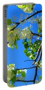 Backlit White Tree Blossoms Portable Battery Charger