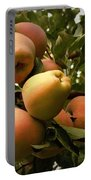 Backyard Garden Series - Apples Cluster Portable Battery Charger