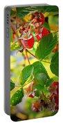 Backyard Garden Series - Sunlight On Raspberries Portable Battery Charger