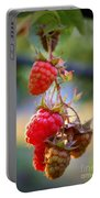 Backyard Garden Series - The Freshest Raspberries Portable Battery Charger