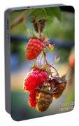 Backyard Garden Series - The Freshest Raspberries Portable Battery Charger