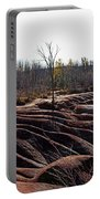Badlands In Autumn Portable Battery Charger