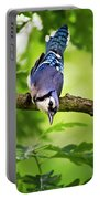 Balanced Blue Jay Portable Battery Charger