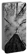 Bald Cypress Sky Portable Battery Charger