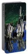 Bald Cypress Stump Portable Battery Charger