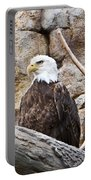 Bald Eagle - Portrait Portable Battery Charger
