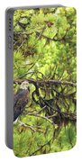 Bald Eagle In A Pine Tree, No. 5 Portable Battery Charger