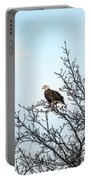 Bald Eagle In A Tree Enjoying The Sunlight Portable Battery Charger