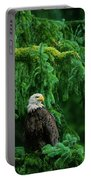 Bald Eagle In Temperate Rainforest Alaska Endangered Species Portable Battery Charger
