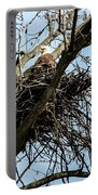 Bald Eagle In The Nest Portable Battery Charger