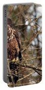 Bald Eagle Juvenile 2 Portable Battery Charger