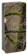 Bald Eagle On Mossy Branch Portable Battery Charger