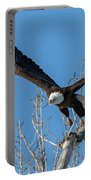 Bald Eagle Shows Its Focus Portable Battery Charger