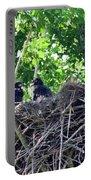 Bald Eaglet's 5 Wks 2 Portable Battery Charger
