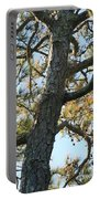 Bald Head Tree Portable Battery Charger