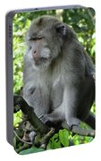 Balinese Monkey In Tree Portable Battery Charger