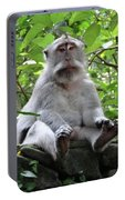Balinese Serious Monkey Portable Battery Charger