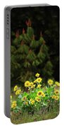 Balsamroot And Evergreen Portable Battery Charger