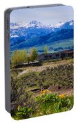 Balsamroot Flowers And North Cascade Mountains Portable Battery Charger