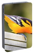 Baltimore Oriole About To Jump Portable Battery Charger