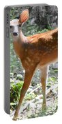 Bambi1 Portable Battery Charger