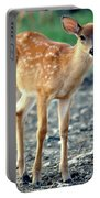 Bambi2 Portable Battery Charger
