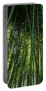 Bamboo 01 Portable Battery Charger