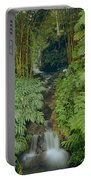 100837-bamboo And Ferns Creek  Portable Battery Charger