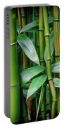 Bamboo Green Portable Battery Charger
