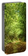 Bamboo Hike Portable Battery Charger