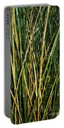 Bamboo Shoots  Portable Battery Charger