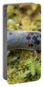 Banana Slug Closeup In Moss Portable Battery Charger