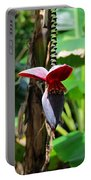 Banana Tree --plantain II Portable Battery Charger