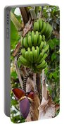 Bananas In Africa Portable Battery Charger