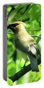 Bandit Bird Portable Battery Charger